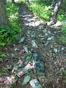 Some people walk on sunshine. We walk on rocks.